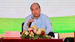 1.500 câu hỏi của nông dân chờ Thủ tướng giải đáp tại hội nghị đối thoại lần 3
