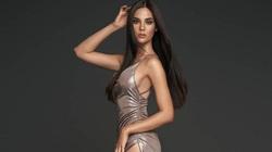 Hoa hậu Hoàn vũ bị kẻ xấu cắt ghép, phát tán ảnh khỏa thân giả mạo