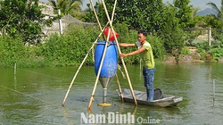 Bắt bán 60 tấn cá chạch phàm ăn, trai Nam Định thành tỷ phú