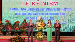 """Chủ tịch Thào Xuân Sùng """"đặt hàng"""" nông dân Điện Biên sản xuất sản phẩm đặc sản, ít người có"""