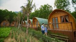 Thủ tướng yêu cầu 'quản' mô hình du lịch kết hợp trang trại nghỉ dưỡng