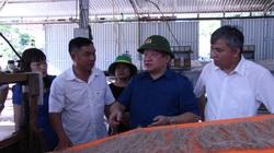 Chủ tịch Hội NDVN Thào Xuân Sùng: Quan tâm đào tạo nghề, hỗ trợ hội viên nông dân