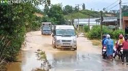 Lâm Đồng: Mưa lớn, nhiều tuyến đường ngập trong nước lũ