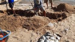Khánh Hòa: Cá chết la liệt, vớt lên hàng tấn toàn cá mú, cá chim to bự, ngư dân thiệt hại tiền tỷ