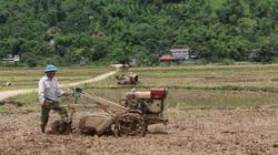 Kim Bôi: Xây dựng nông thôn mới là không có điểm dừng