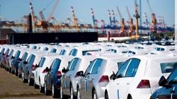 Đặc cách thông quan 41 ô tô bị kẹt vì nhập nhầm cửa khẩu