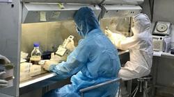 Sau 2 ca nhiễm từ Đà Nẵng: TP.HCM kích hoạt các đội phản ứng nhanh, giám sát Covid-19