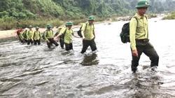Quảng Nam: Lập lực lượng bảo vệ rừng chuyên trách, ngày đêm canh giữ lá phổi xanh