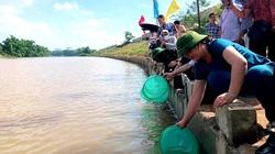 Lạng Sơn: Hơn 108.000 con cá giống được thả xuống sông Kỳ Cùng