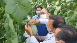 Chủ tịch TƯ Hội Nông dân ấn tượng với mô hình trồng loại cây thu gấp 10 lần trồng lúa
