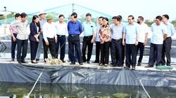 Bộ trưởng Nguyễn Xuân Cường vừa thăm trang trại ở tỉnh Ninh Bình, ở đây nuôi con gì mà lãi 7 tỷ/năm?