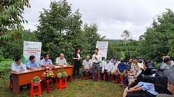Kỹ thuật này giúp người trồng cà phê bớt lo thiếu nước, tốn phân, còn giảm 10-18 triệu chi phí/ha