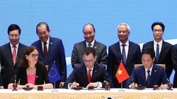 Nhìn lại chặng đường một thập kỷ Hiệp định EVFTA