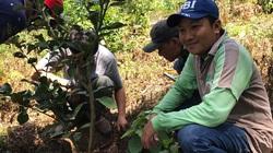 """An Giang: Được Giáo sư nổi tiếng """"xui"""" trồng cây ăn trái trên Núi Dài, nông dân khá giả hẳn"""