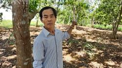 Quảng Trị: Đất dân khai hoang, sử dụng nhưng lại cấp sổ đỏ cho công ty