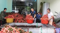 Bắc Giang: Tăng trưởng kinh tế ước đạt 6,4% trong 6 tháng đầu năm 2020