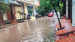 """Hà Nội: Sẽ xóa """"điểm đen"""" cứ mưa là ngập ở làng Việt Kiều Châu Âu"""