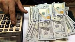 Tỷ giá ngoại tệ hôm nay 22/8: Đồng USD tăng giá