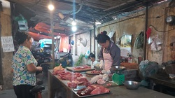 Giá heo hơi hôm nay giảm sát 80.000 đồng/kg, dịch tả lợn châu Phi âm ỉ tái phát ở 46 xã