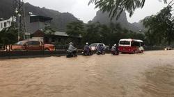 2 người bị thương, hàng nghìn hộ dân mất điện sau mưa lớn ở Quảng Ninh
