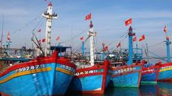 Bộ Ngoại giao yêu cầu Malaysia điều tra thông tin ngư dân Việt Nam thiệt mạng