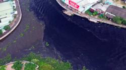 Nước sông ở miền Tây bất ngờ chuyển màu đen, nghi do rơm rạ phân huỷ gây nên