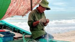 Chống dịch Covid-19: Ngư dân Sầm Sơn ra khơi một mình, lên bờ là đeo khẩu trang
