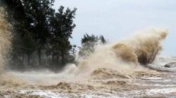 Thông tin mới về cường độ và vị trí đổ bộ của bão số 4