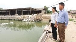 Nông dân Hưng Yên làm giàu nhờ trồng cây đặc sản, nuôi con đặc sản
