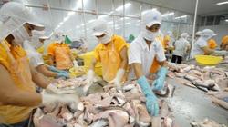 Xuất khẩu thủy sản giảm mạnh mùa covid-19