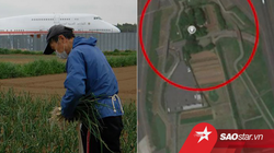 Bác nông dân từ chối 40 tỷ tiền bồi thường để trồng rau giữa sân bay lớn thứ hai Nhật Bản