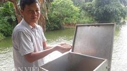 Biến 3 cái khe nước thành ao nuôi 30 tấn cá, làm thêm nghề bóc ván, ông nông dân tỉnh Lào Cai là tỷ phú