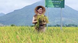Bảo Minh muốn nắm chắc tay nông dân khi bước ra thế giới