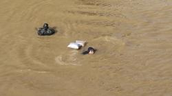 Trung Quốc xả lũ sông Hồng, người dân bất chấp nguy hiểm ra bơi