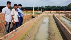 An Giang: Làm chuồng trên đồng nuôi lươn la liệt, nông dân rủ nhau vào chi hội nghề nghiệp để làm giàu