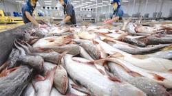 Xuất khẩu cá tra sang Singapore tăng mạnh