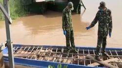 Bắt 6 tấn heo từ Campuchia nhập lậu vào Việt Nam