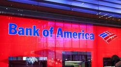 Kiểm tra tài khoản, khách hàng Bank of America thấy 2,45 tỷ USD