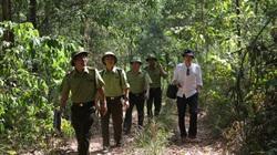 Băng núi giữa mùa khô giữ rừng xứ Nghệ