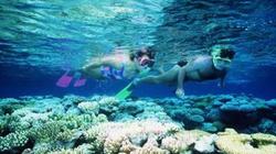 Dự án KDL San hô xanh Côn Đảo: 18 năm vẫn chưa xong
