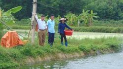 Thái Nguyên: Nuôi đủ loại cá ngon dưới ao to rộng, lão nông thu trăm triệu mỗi năm