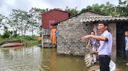 Dưới ruộng lúa thả cá tung tăng bơi lội, trên bờ trồng rau quả, nông dân lãi trăm triệu/vụ