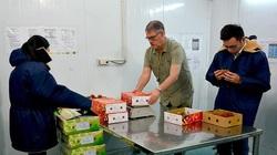 Mới: Ngày 2/9, chuyên gia Mỹ sang Việt Nam giám sát xuất khẩu trái cây, tuân thủ cách ly đủ 14 ngày
