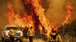 Lính cứu hỏa vật lộn với hàng loạt đám cháy lớn ở California như thế nào?