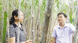 Tuyên Quang: Đột phá xây dựng nông thôn mới từ các mô hình điểm dạy nghề