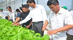 """Công bố chính thức danh sách 63 """"Nông dân Việt Nam xuất sắc"""" năm 2020"""
