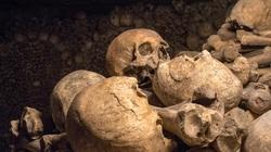 Khai quật mật thất 4.300 năm, thứ bên trong khiến nhà khảo cổ... rùng rợn