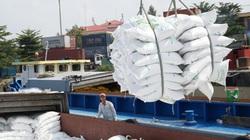 Việt Nam có gạo xuất khẩu giá 1.000USD/tấn, Thái Lan lập tức thay đổi chiến lược ngành gạo