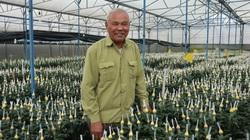 Bỏ 75 cây vàng mua đất chỉ để trồng hoa, ông nông dân Đà Lạt nói gì?