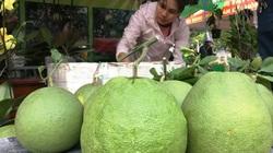 Khánh Hoà: Ảnh hưởng dịch Covid-19, dừng tổ chức phiên chợ nông sản năm 2020